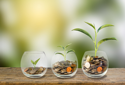 istock Investment concept. Growth plant on coins three step in clear glass bottle on wooden table with green blurred background and light. Conceptual saving money for growing business and future 909645158