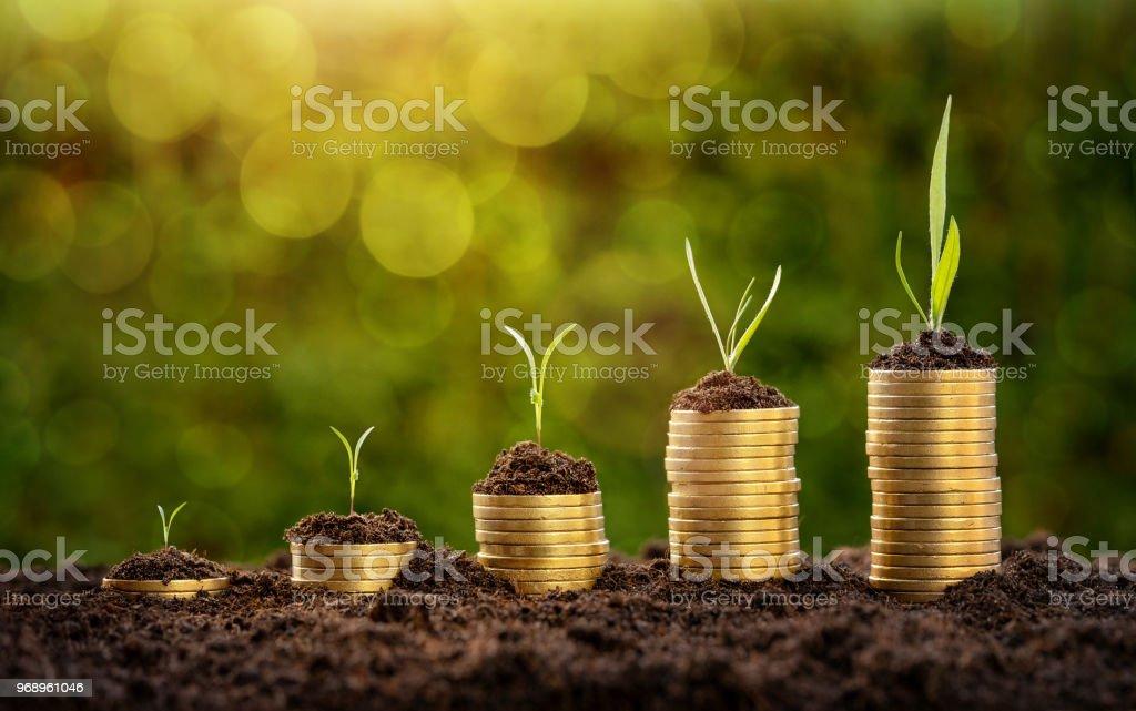 Investitionen Konzept – Foto