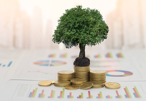 investment growth stock photo