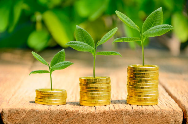 Investment, money, interest and financial concept. stock photo