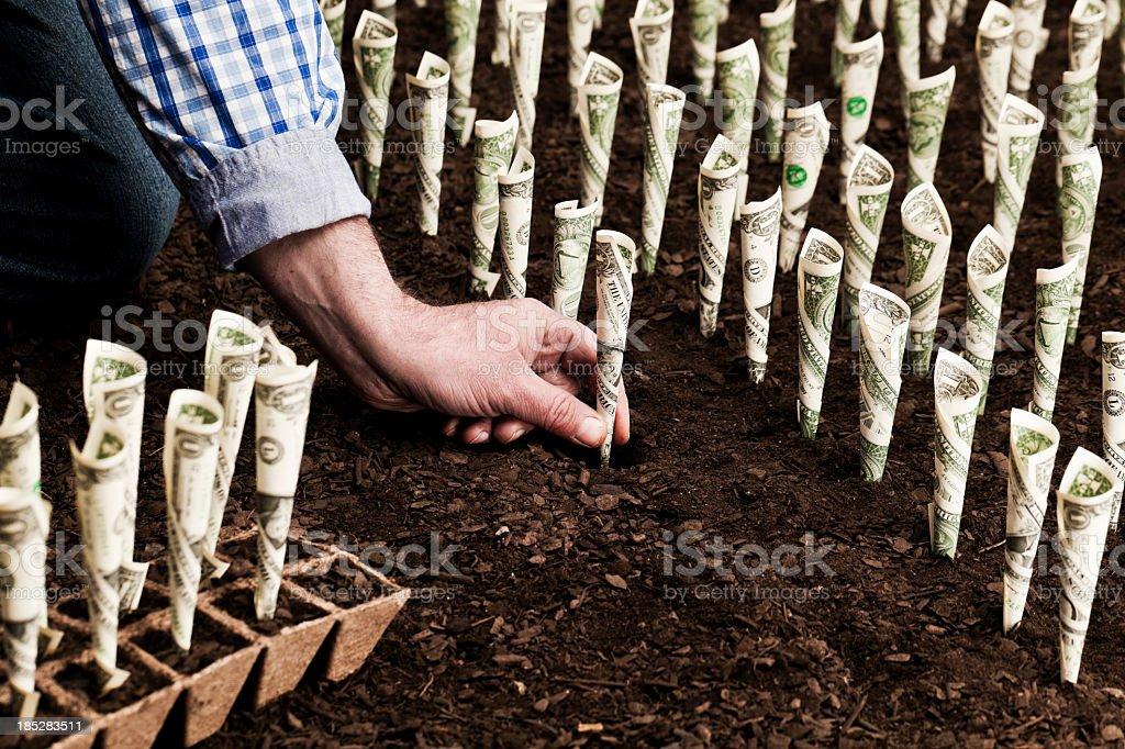Investment Farmer planting money Abundance Stock Photo