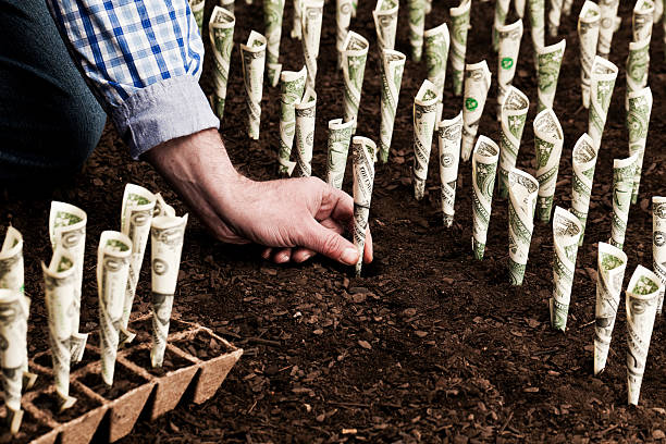 investment - 耕種環境 個照片及圖片檔