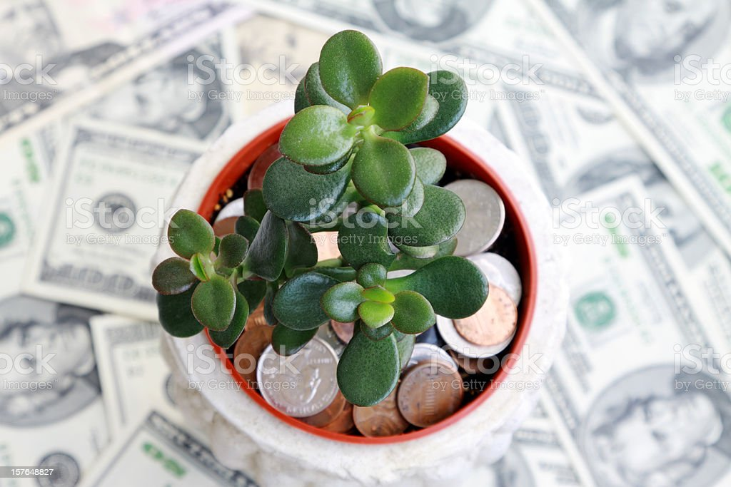 Investment Saving stock photo