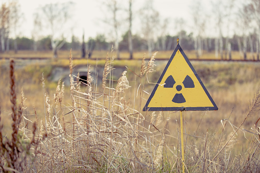 Ionizing Radiation sign next to Red Forest in Chernobyl Nuclear Power Plant Zone of Alienation, Ukraine 2020 year