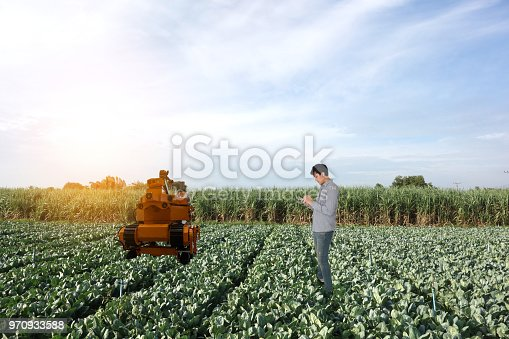istock iot, smart agriculture in the futuristic concept, smart farmer use robot in agriculture to keep ,collect vegetable, fruit, product in the farm and use tablet keep data, analysis in the real time 970933588