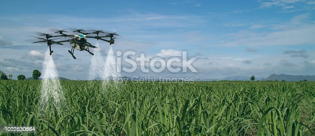 898449496 istock photo iot smart agriculture industry 4.0 concept, drone (in precision farm) use for spray a water, fertilizer or chemical to the field, farm for growth a yields,crops, use for control, kill the bug or weed 1022530864