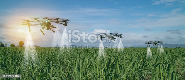 898449496 istock photo iot smart agriculture industry 4.0 concept, drone (in precision farm) use for spray a water, fertilizer or chemical to the field, farm for growth a yields,crops, use for control, kill the bug or weed 1022530866
