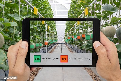 istock iot smart farming, agriculture industry 4.0 technology concept, farmer hold the tablet to use augmented mixed virtual reality software Artificial intelligence to detect and keep data in farm 1050032068