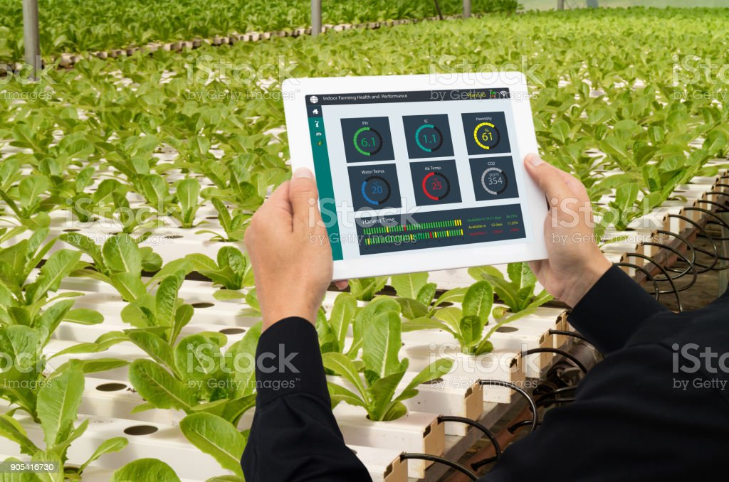 iot smart industry robot 4.0 agriculture concept,industrial agronomist,farmer using tablet to monitor, control the condition in vertical or indoor farm ,the data including Ph, Temp, Ic, humidity, co2 stock photo