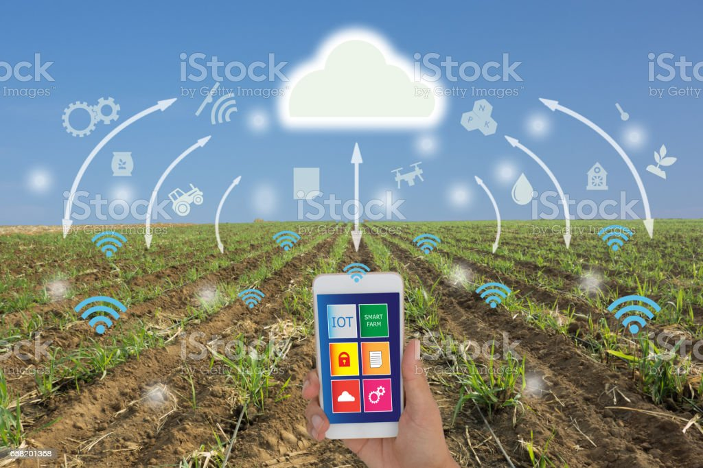 iot,Internet of things(agriculture concept) stock photo
