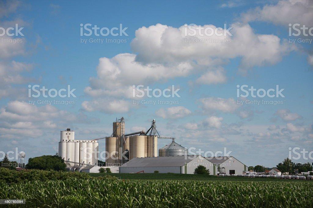 Iowa Grain Elevator Near Cornfield stock photo