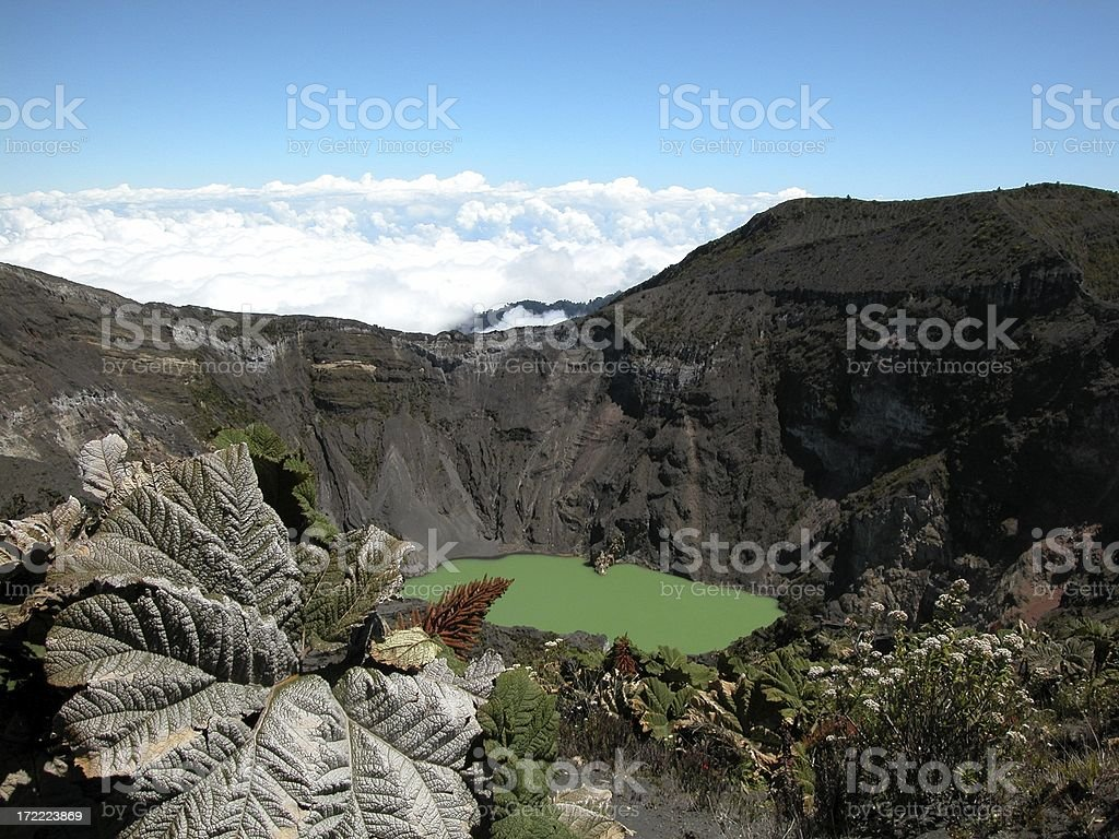 Irazu Volcano Crater and Plants Above Clouds, Costa Rica stock photo