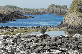 Green rocks on atlantic coast. Blue water and grey stones of Ireland island