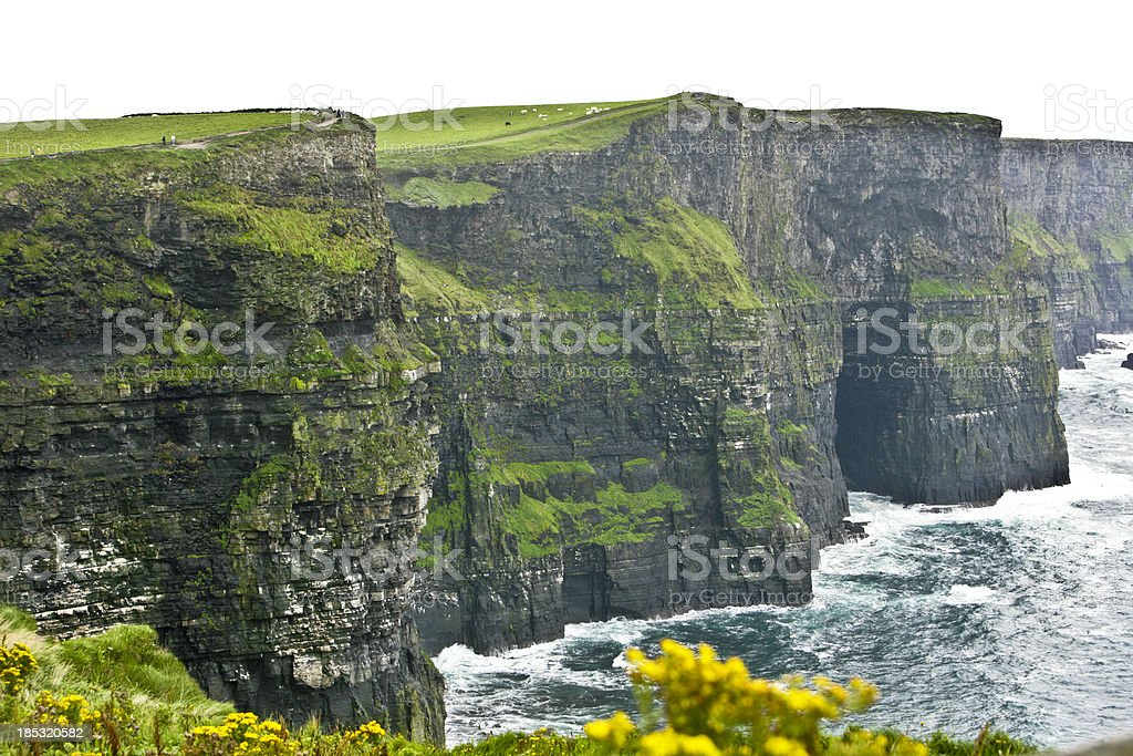 Ireland - Cliffs of Moher royalty-free stock photo