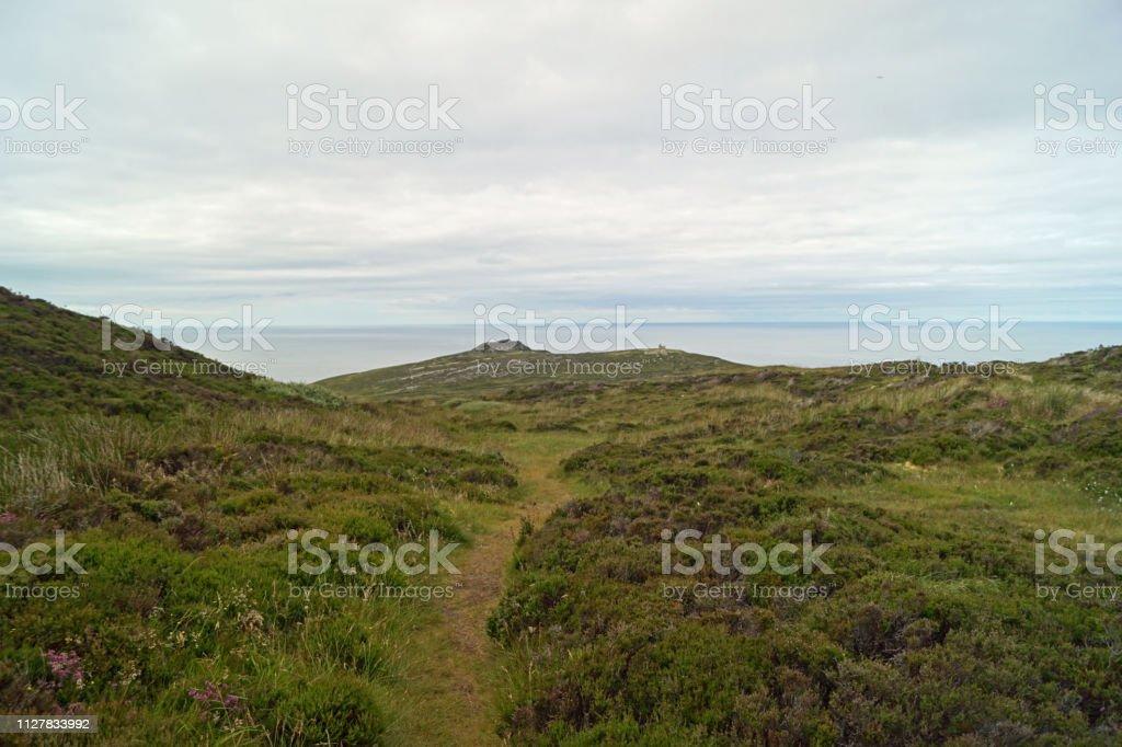 Ireland\'s coasts - wild cliffs, enchanting nature. Ireland is full of...