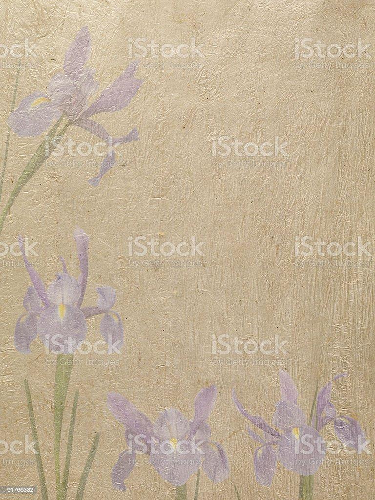 Iris Paper Stationary royalty-free stock photo