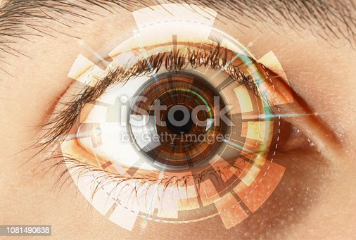 istock Iris recognition system 1081490638