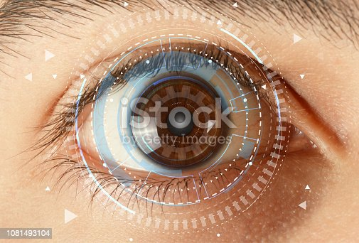istock Iris recognition system 1081493104