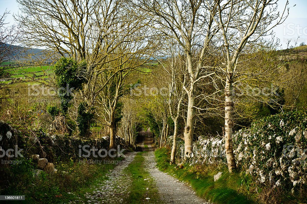 Irish Country Road in County Clare royalty-free stock photo