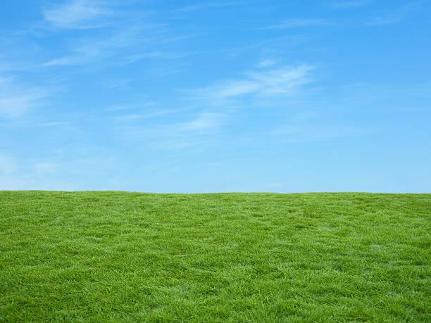 Irish fields stock photo