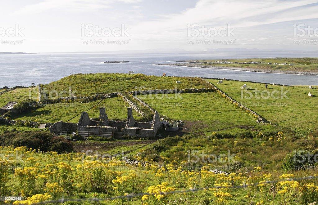 Irish green countryside royalty-free stock photo