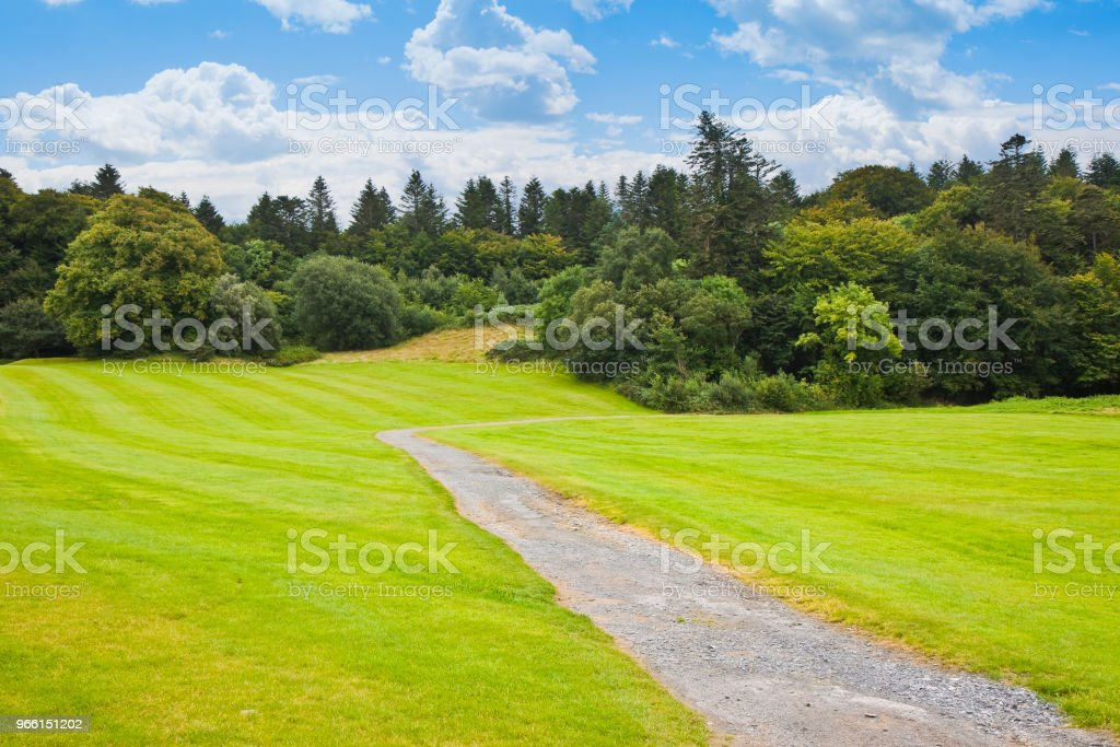 Irish landscape with meadow and forest in the background - panoramic view - Royalty-free Agricultural Field Stock Photo