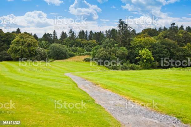 Ирландский Пейзаж С Лугом И Лесом На Заднем Плане Панорамный Вид — стоковые фотографии и другие картинки Без людей