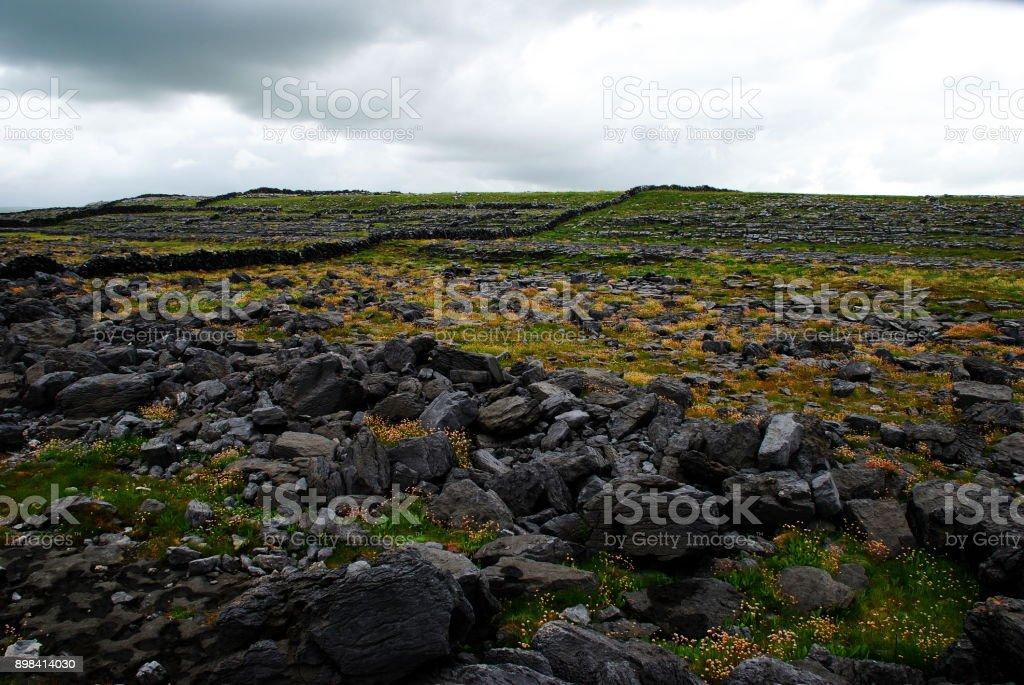 Irish meadow and rock walls stock photo