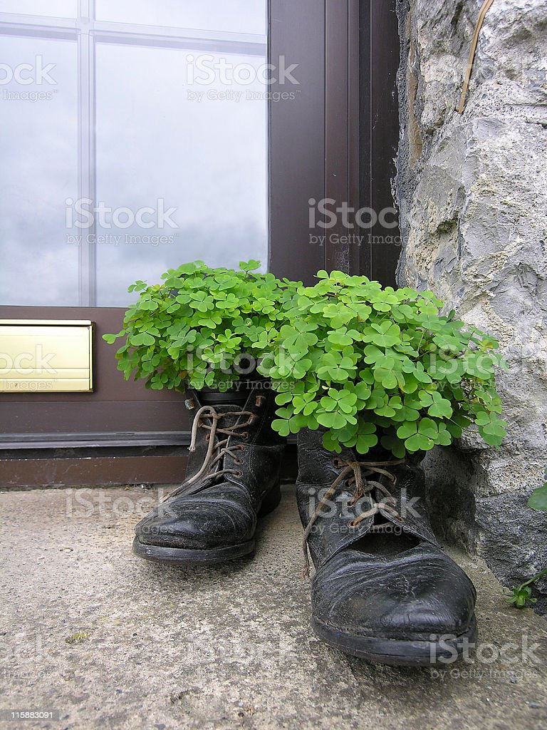 Irish Shamrock Shoes royalty-free stock photo