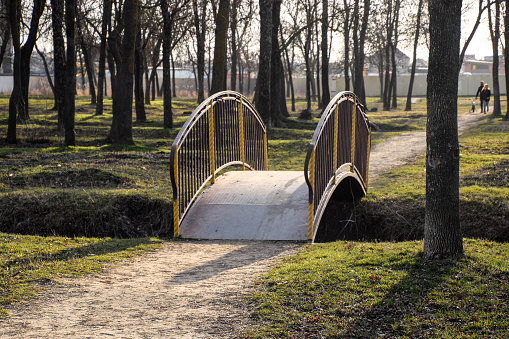 Iron bridge over a ditch in a park. The arcuate bridge.