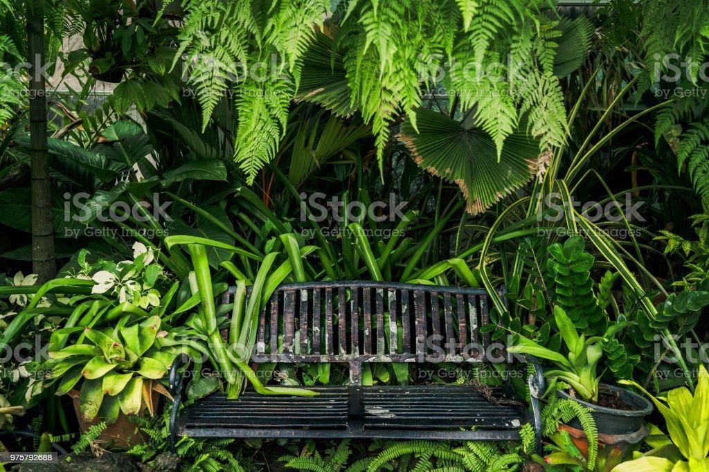 Eisen Stuhl im schönen grünen Garten. - Lizenzfrei Baum Stock-Foto