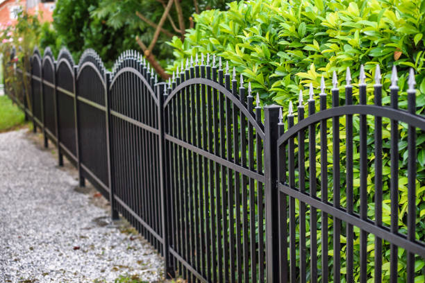 iron fence - staccionata foto e immagini stock