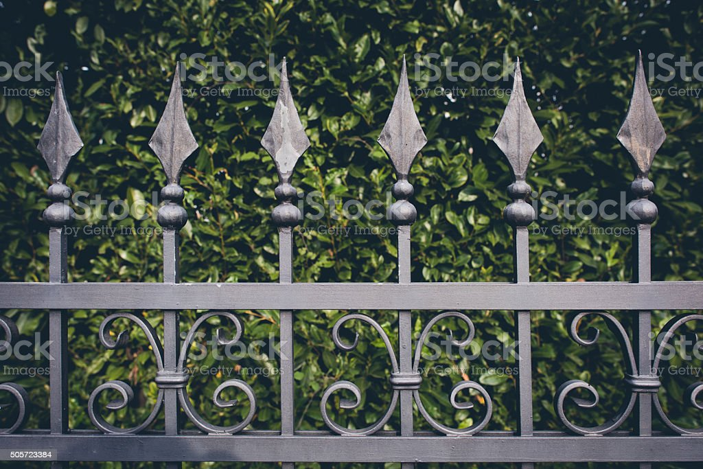 iron fence with green leaves background stock photo