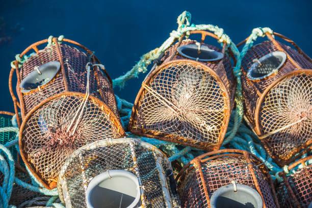Iron fishing traps stock photo