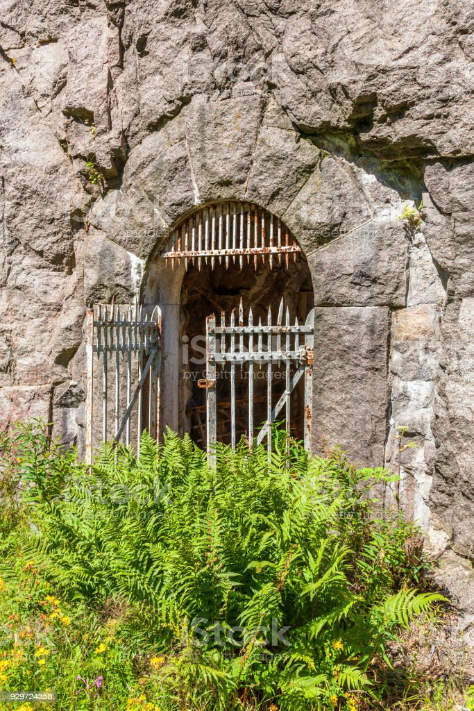 Iron gate at a Mountain Tunnel with ferns outside stock photo