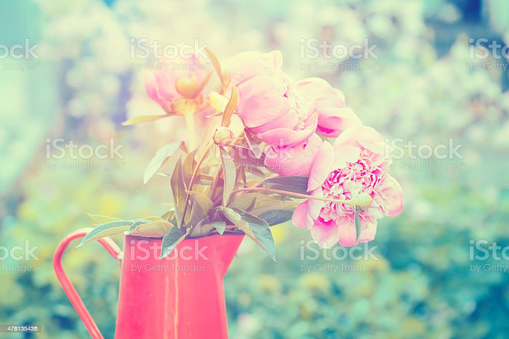 Iron pitcher with silky pink peonies