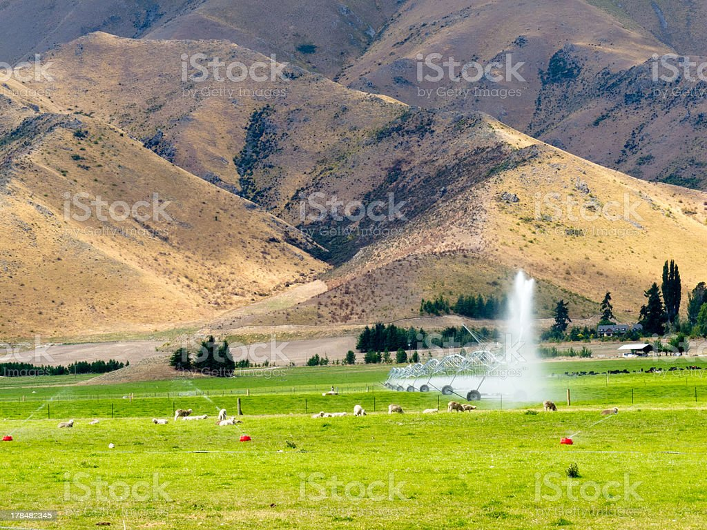 Irrigating lush farm pastures in central Otago, NZ royalty-free stock photo