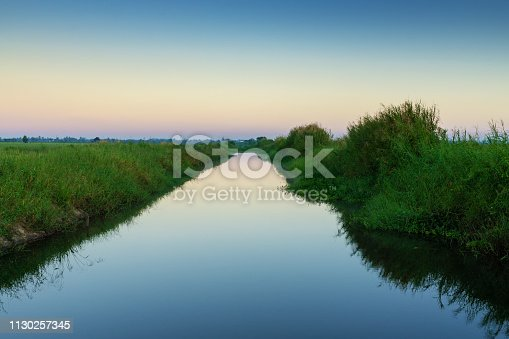Agricultural Field, Malaysia, paddy, Land, malaysia