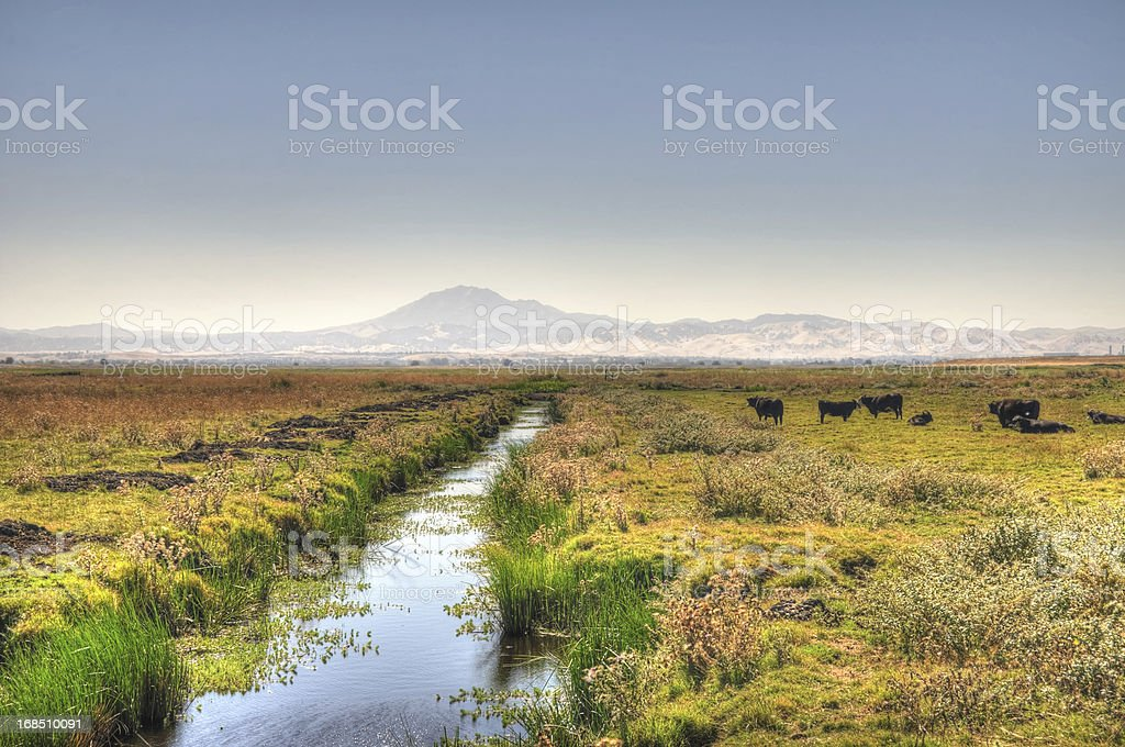 Irrigation Canal in the Country (HDR) stock photo