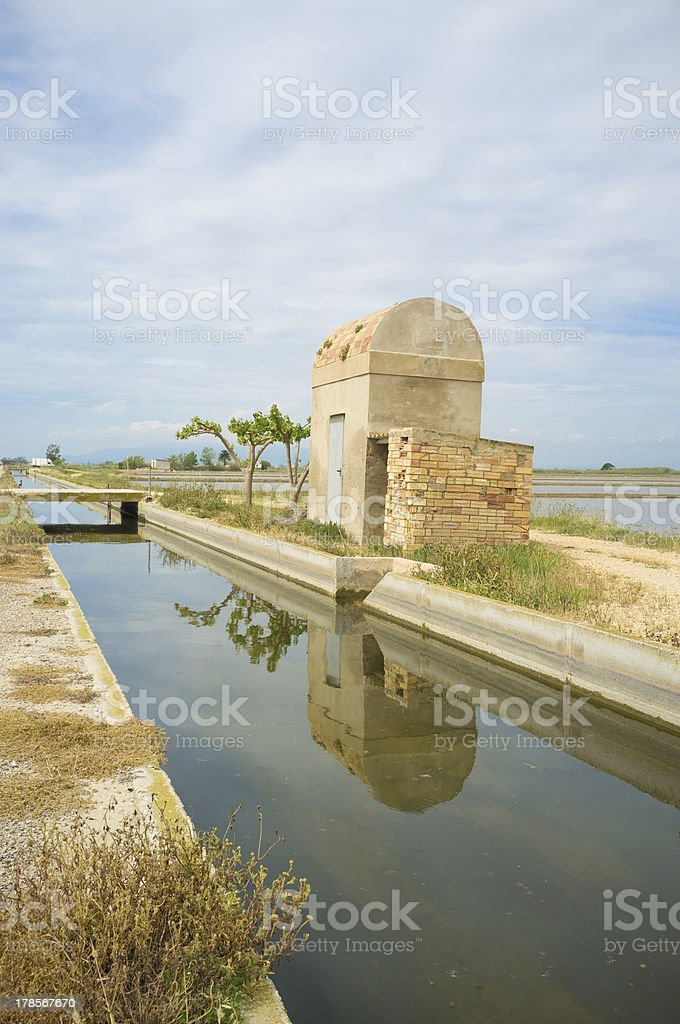 Irrigation canal through rice fields stock photo