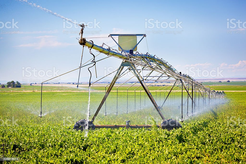 Irrigation Equipment, Agricultural Water Sprinklers Watering Farm Plants Crop Field stock photo