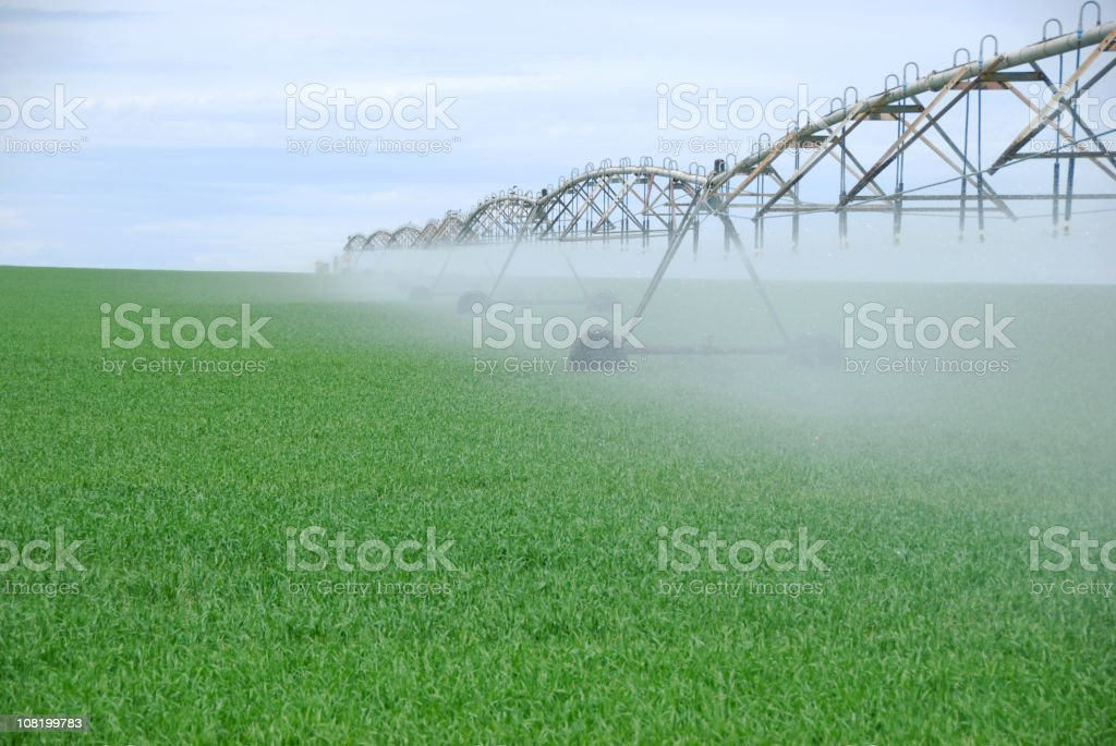 Irrigation in Field stock photo