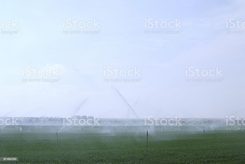 Irrigation royalty-free stock photo