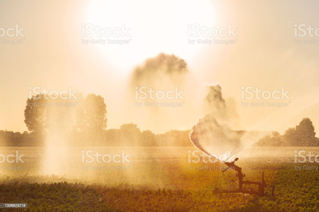 Irrigation sprinkler on farmland stock photo