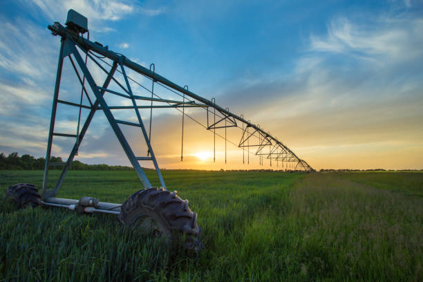Irrigation system in field in spring Irrigation system on wheels on wheat field at sunset in spring. Agricultural technologies irrigation equipment stock pictures, royalty-free photos & images