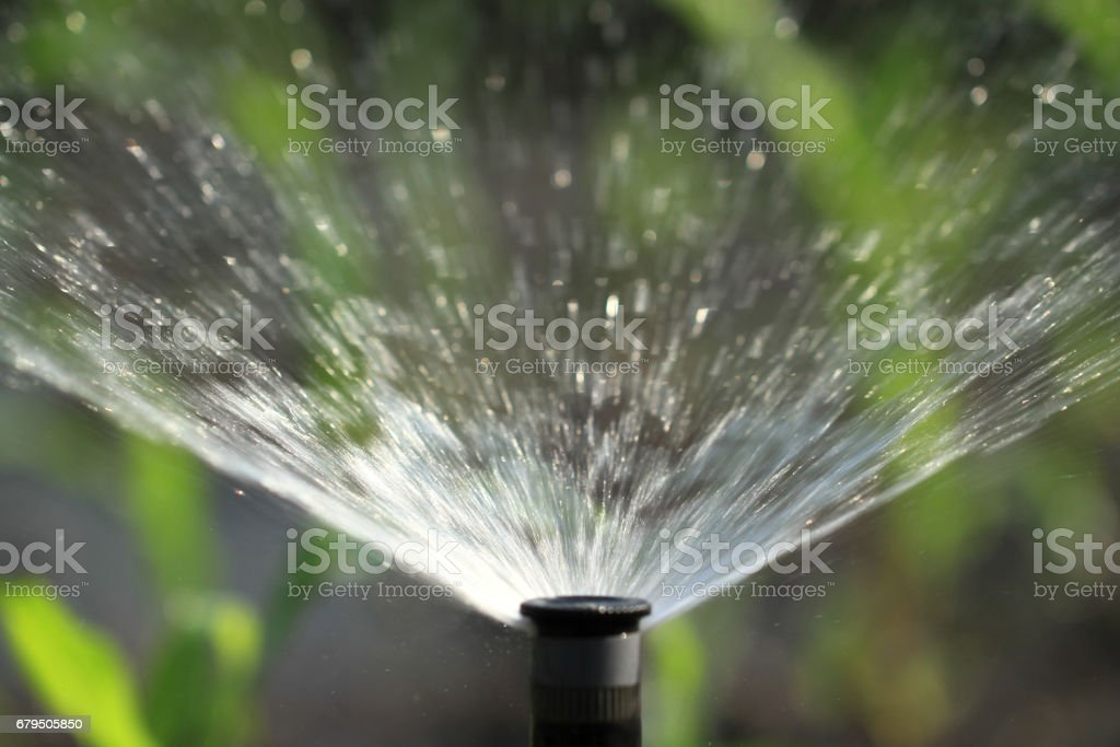 Irrigation system watering green plant royalty-free stock photo