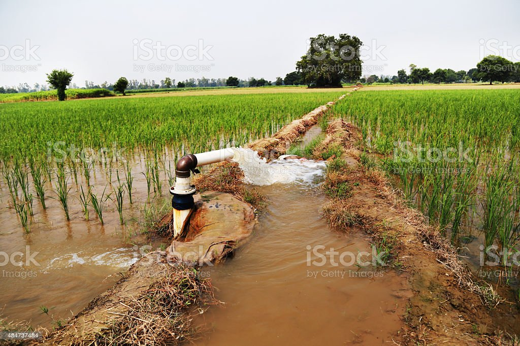 irrigation tube well