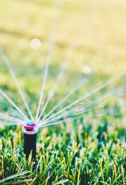 Bewässerung. Bewässerung von Rasen im Sommer von Sprinkler-system – Foto