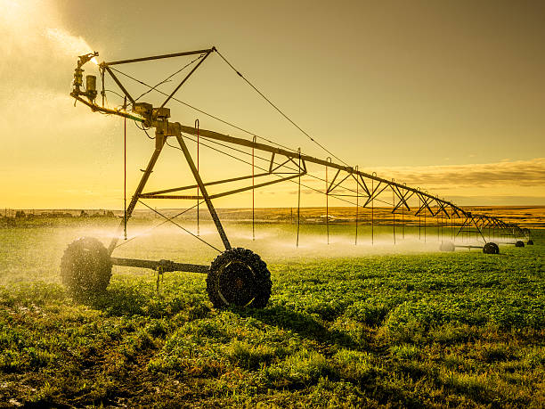 Irrigator Machine at palouse Irrigator Machine at palouse, WA, USA. irrigation equipment stock pictures, royalty-free photos & images
