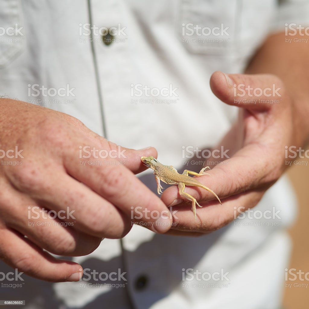 Is that supposed to hurt? stock photo